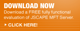 Download Managed File Transfer Software Now