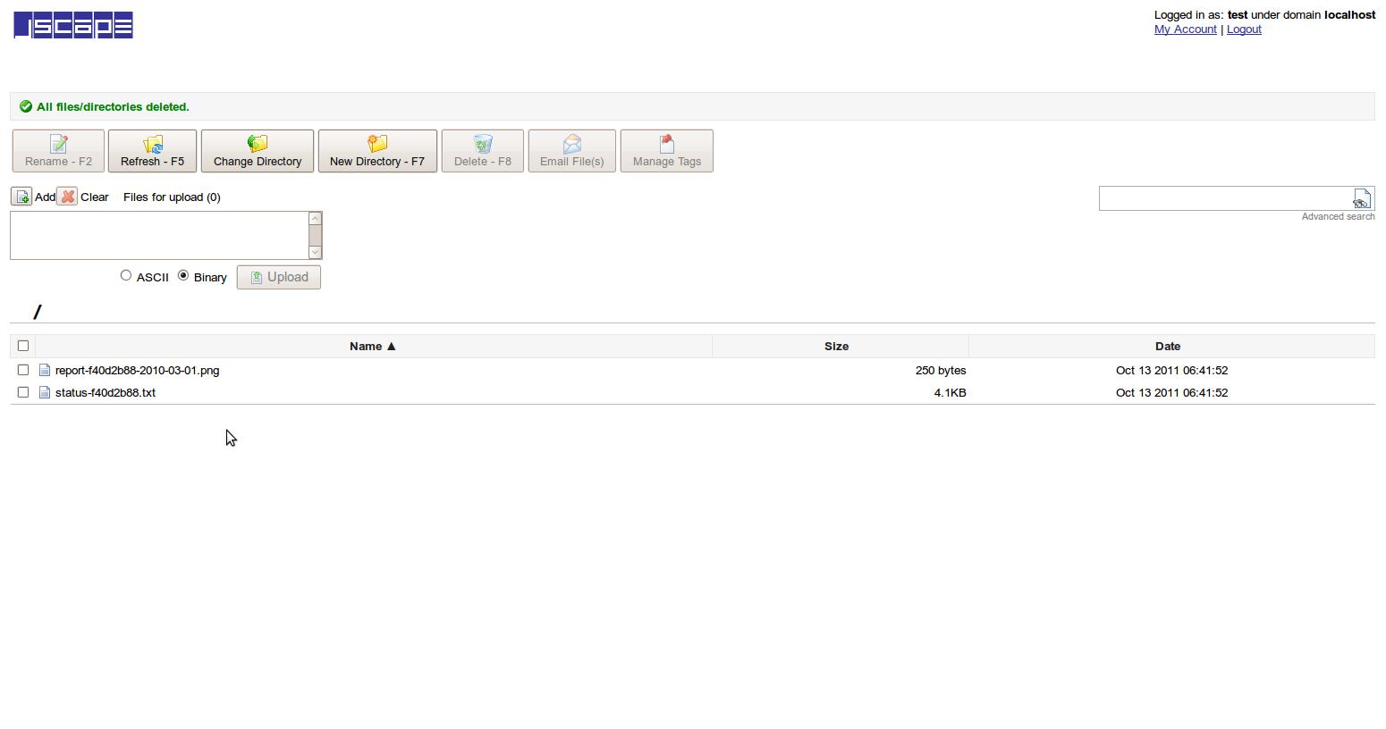 File Upload Interface Result