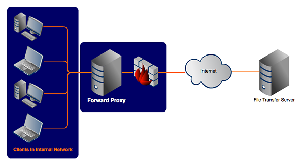 Forward Proxy vs  Reverse Proxy | JSCAPE