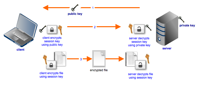 secure file transfers hybrid cryptosystem