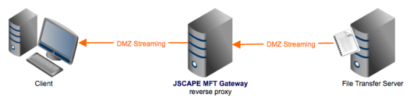 reverse proxy dmz streaming resized 600