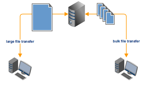 large_file_transfer_bulk_file_transfer_manual