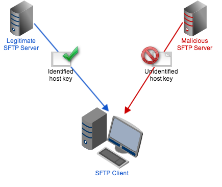 sftp host key resized 600