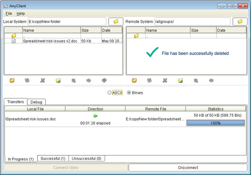 file successfully deleted mft server