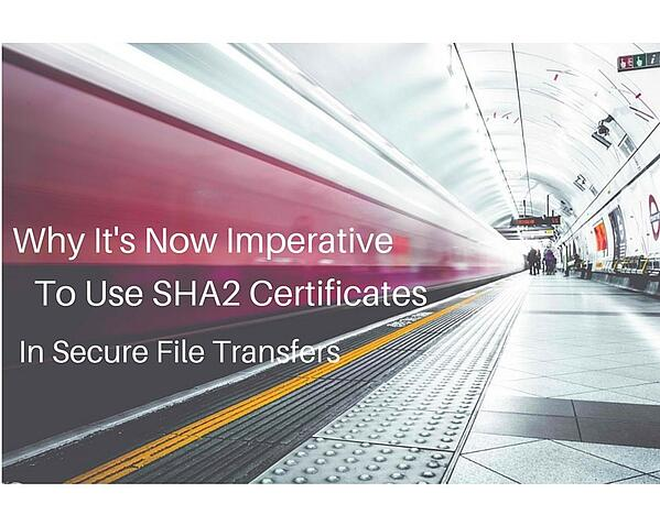 SHA2 Certificates Are Imperative