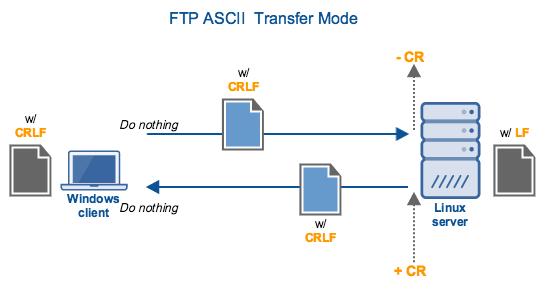 ftp_ascii_transfer_mode.png