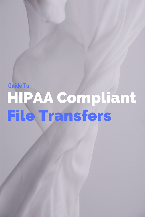guide_to_hipaa_compliant_file_transfers.png