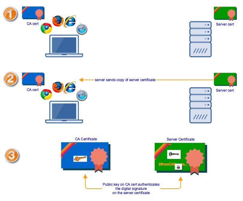 verifying_server_certificates