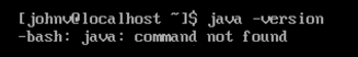 java version command not found