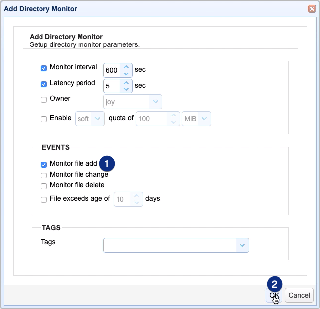 monitor file add on directory monitor for automated as2