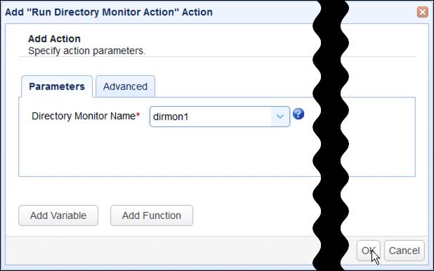 run directory monitor action parameters