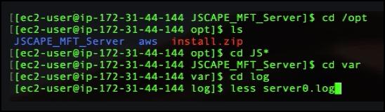 view server0 log