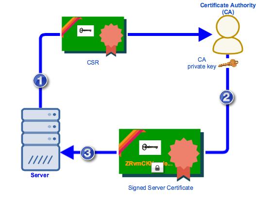 csr-ca-signed-server-certificate