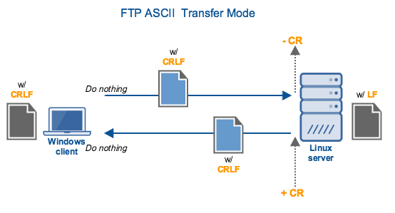 FTP Binary and ASCII Transfer Types And The Case of Corrupt