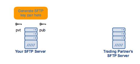 generate_sftp_public_private_key_pair_here